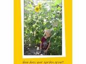 Preschool Plant Unit