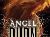 Review: Angel Burn (Audiobook)