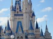 Walt Disney World Castles, Wild Animals Hollywood Studios!