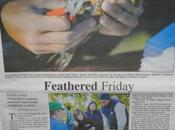 Feathered Friday Article