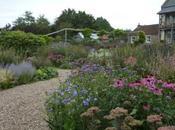 Organic Garden Holt Farm
