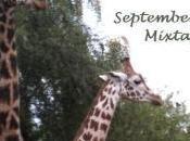Outroversion's September 2011 Mixtape