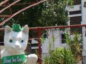 Kuching; City Cats