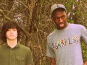 Stray Kites Exuberant Folk [free Album]