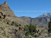2011 Spring Creek Canyon, Little Book Cliffs Wilderness Study Area Wild Horse Range