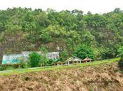 Chocolate Hills: Marvelling Bohol's Pride