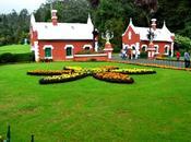 Ooty Botanical Gardens, Tamil Nadu