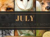 Wild Wednesday Back: Ontario Wildlife Conservation Needs Your Help