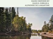 Haiku: Celebration Human Journey