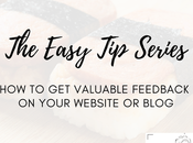 Easy Series: Valuable Feedback Your Website Blog Paying Attention Lazy Pitches