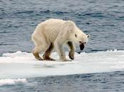 Images Climate Change Influence Perceptions