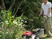 Buying Right Lawnmower