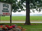 Indiana Apple Orchards: Skiles Orchard Farm Market