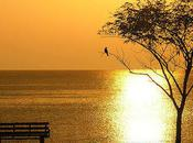 Marvelous Shots Sunrise Photography