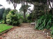 Guernsey Garden Early October…