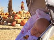 Happy Halloween! Trip Pumpkin Patch...