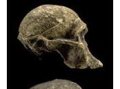 Skull Spotting Part