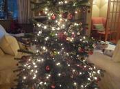 Christmas Ritual Selecting Tree