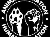 Uniting Struggles: Where Animal Liberation Anti-Oppression Meet