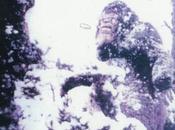 Bigfoot News January 2014