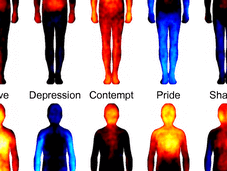 Bodily Maps Emotions.