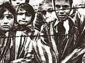 International Holocaust Remembrance