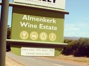 Almenkerk Family Affair