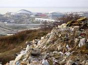Environmental Groups Denounce Arrests Ecologists Near Olympic Sites