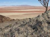 Your African Fold Sojourn Namib Desert