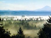 Happy Birthday Oregon February 1859