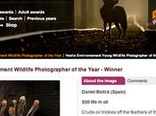 Veolia Environnement Wildlife Photographer Year