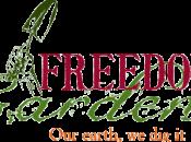 Bringing Back Freedom Gardens