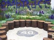 Flower Show Tatton Park: 'Embrace' Sharon Hockenhull