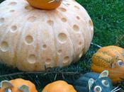 Food Friday: Pumpkin Carving Ideas from World's Largest Festival