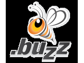 .BUZZ Release Premium Domain List With Prices High $46,880