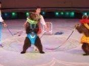 Animal Cruelty North Korean Circuses, Where Bears Roller Skate Etc. PETA States This Only Learned Through Torture