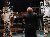 Russia Moves Protect Entertainment Animal Abuse