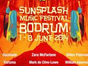 SunSplash Festival 2014 Bodrum Turkey, 1-8th June