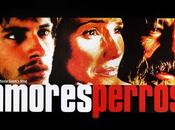 Amores Perros [2000]: Loyal Dogs, Disloyal People