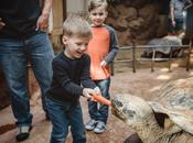 Once Lifetime Trip Zoo! {Take THAT Autism}
