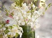 Spring Floral Guide