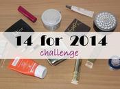 2014 Challenge Update