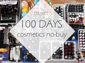 Days Cosmetics No-buy Final Update