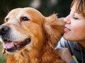 Pets Great Companions