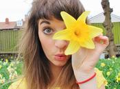 Violet Daffodils Birthday!