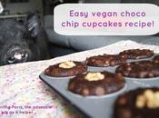 Vegan Recipe: Banana Chocolate Chip Cupcakes (DIY Iherb Discount Code!)