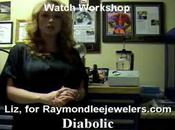 Raymond Jewelers Series: Watch Shop