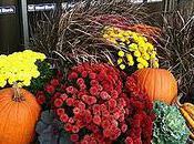 Serve Some Gratitude Thanksgiving
