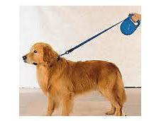 Retractable Leashes: Good