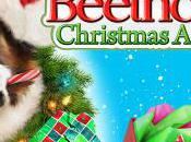 Superconductor 2011 Gift Guide Part III: Beethoven Holidays